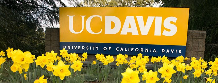 BA in Psychology; BS in Human Development UC Davis